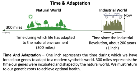 Time and Adaptation
